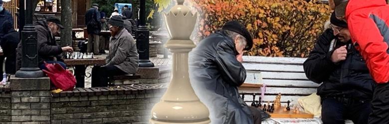 free chess seminar